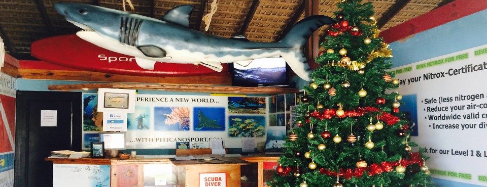 Pelicano Dive Shop